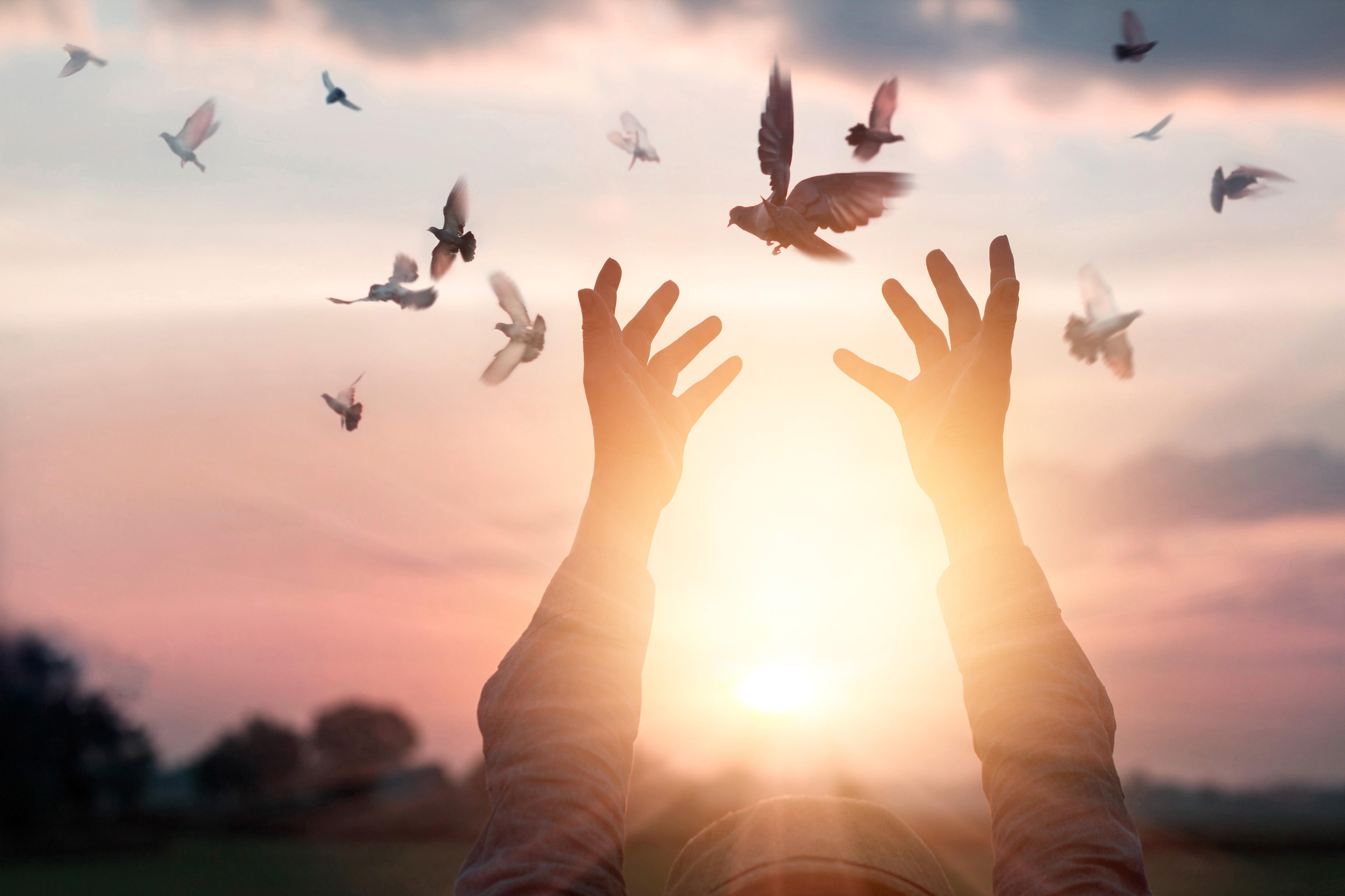 Na Zemlji nastaja nova resničnost: Glavna naloga ljudi je, da se duhovno prebudijo